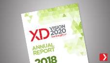 Vision 2020, rapport annuel